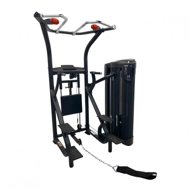 Multi gym  Dual Station Chin Up de INSPIRE by HAMMER